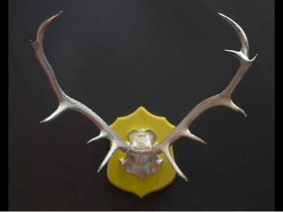 Eskimo - Old Deer